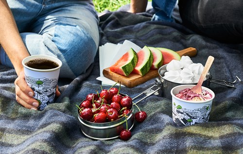 Picnic with coffee and ice cream