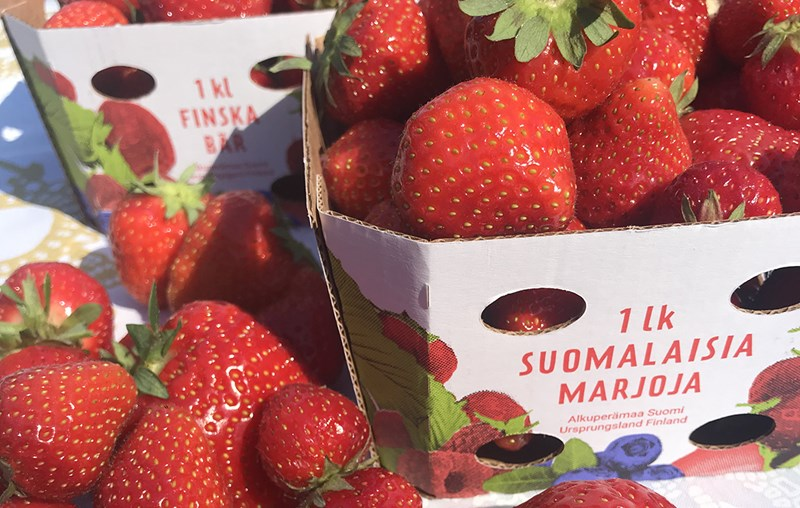 Achieving the right shade of red print is important to Pakkasmarja. The colours of the strawberry box designed by Juho Viironen of Packlab reproduce correctly on EcoFreshBox.