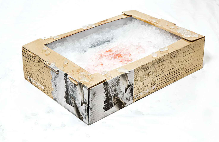 EcoFishBox with fish on ice