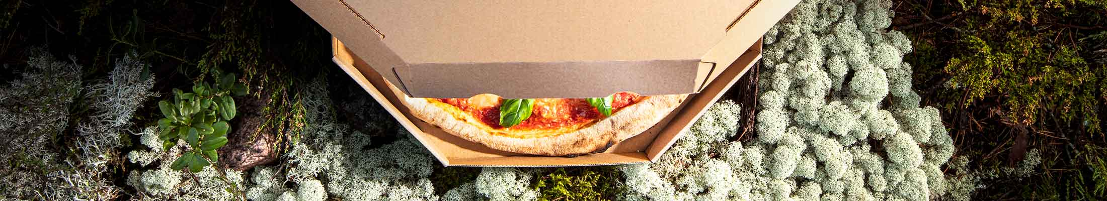 Pizza corrugated packaging